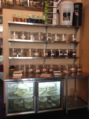 Hops and malts at Copper Kettle Brewing