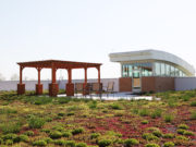 building_greenroof_wallae